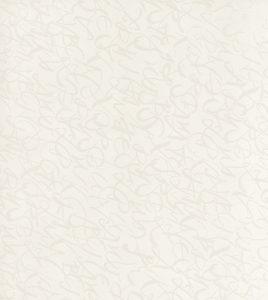 Латиница Белая
